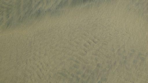 beach, sand