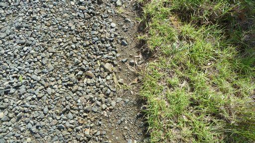 grass, gravel, pebble, road